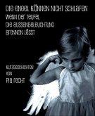 Die Engel können nicht schlafen ... (eBook, ePUB)