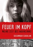 Feuer im Kopf (eBook, ePUB)