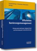 Effizientes Sanierungsmanagement (eBook, PDF)