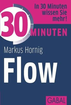 30 Minuten: Flow (eBook, ePUB) - Hornig, Markus