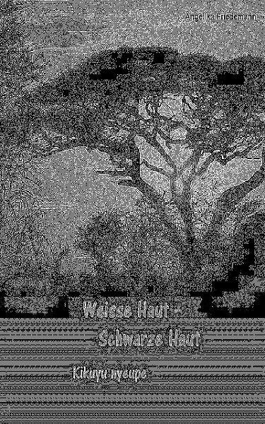 Weisse Haut - Schwarze Haut (eBook, ePUB) - Friedemann, Angelika