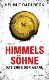 Himmelssöhne (eBook, ePUB)
