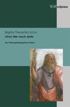 Von hier nach dort Syntetisches Zeug (eBook, PDF) - Schur, Brigitte Theophila