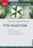 IT für Smart Grids (eBook, PDF)