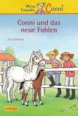 Conni und das neue Fohlen / Conni Erzählbände Bd.22 (eBook, ePUB)