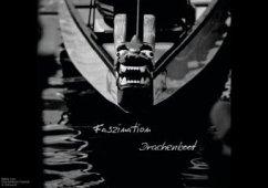 Faszination Drachenboot (Posterbuch DIN A4 quer)