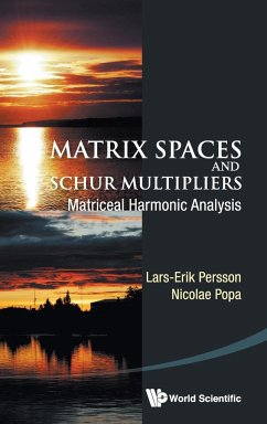 MATRIX SPACES AND SCHUR MULTIPLIERS