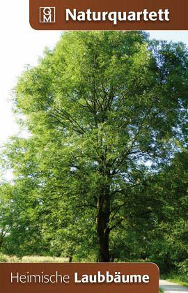 Heimische Laubbäume (Kartenspiel) - buecher.de