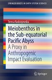 Meiobenthos in the Subequatorial Pacific Abyss
