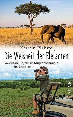 Die Weisheit der Elefanten (eBook, ePUB) - Plehwe, Kerstin