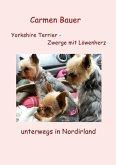 Yorkshire Terrier - Zwerge mit Löwenherz unterwegs in Nordirland