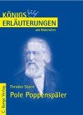 Storm. Pole Poppenspäler (eBook, PDF)