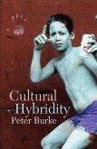 Cultural Hybridity (eBook, ePUB)