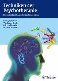 Techniken der Psychotherapie (eBook, ePUB)