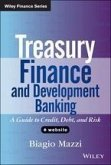 Treasury Finance and Development Banking (eBook, PDF)