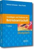 Grundlagen und Probleme der Betriebswirtschaft (eBook, PDF)