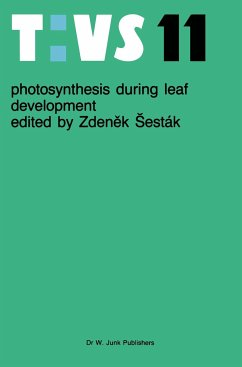 Photosynthesis during leaf development