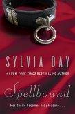 Spellbound (eBook, ePUB)