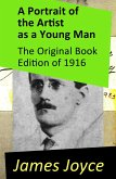 A Portrait of the Artist as a Young Man - The Original Book Edition of 1916 (eBook, ePUB)