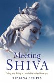 Meeting Shiva (eBook, ePUB)