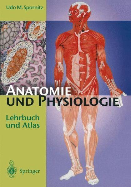 Anatomie und Physiologie von Udo M. Spornitz - Fachbuch - bücher.de