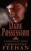 Dark Possession (eBook, ePUB)