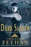 Dark Slayer (eBook, ePUB)