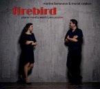 Firebird-Piano Meets World Percussion