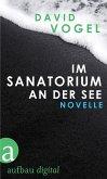 Im Sanatorium / An der See (eBook, ePUB)
