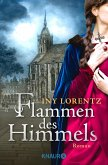 Flammen des Himmels (eBook, ePUB)