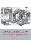 Labour and the Caucus: Working-Class Radicalism and Organised Liberalism in England, 1868-1888
