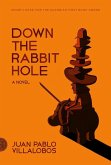 Down the Rabbit Hole (eBook, ePUB)