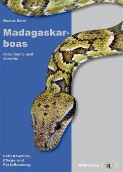 Madagaskarboas - Borer, Markus
