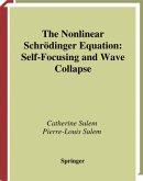 The Nonlinear Schrödinger Equation