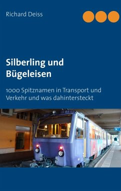 Silberling und Bügeleisen (eBook, ePUB)