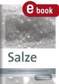 Salze (eBook, PDF)