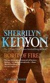 Born Of Fire (eBook, ePUB)