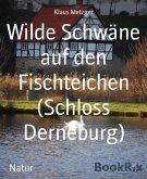Wilde Schwäne auf den Fischteichen (Schloss Derneburg) (eBook, ePUB)