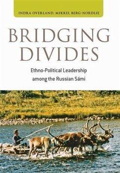 Bridging Divides (eBook, PDF) - Overland, Indra