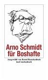 Arno Schmidt für Boshafte (eBook, ePUB)
