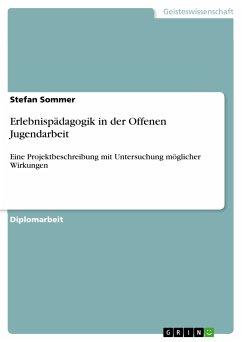 Erlebnispädagogik in der Offenen Jugendarbeit (eBook, PDF)