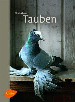 Tauben (eBook, PDF) - Bauer, Wilhelm