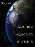Der Sinn des Lebens, The Meaning of Life, Le sens de la vie (eBook, ePUB)