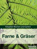 Farne & Gräser (eBook, ePUB)