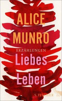 Liebes Leben - Munro, Alice