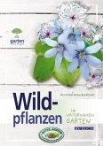 Wildpflanzen (eBook, ePUB)