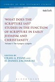 What Does the Scripture Say?' Studies in the Function of Scripture in Early Judaism and Christianity (eBook, PDF)