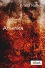 Amerika (eBook, ePUB)