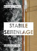 Stabile Seitenlage (eBook, ePUB)