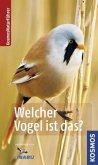 Welcher Vogel ist das? (Restexemplar)